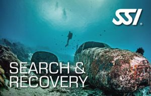 SSI-search-recovery