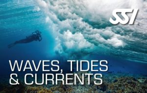 SSI-waves-tides-and-currents